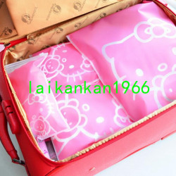 Transparent Hello Kitty Cosmetic Bag Travel Makeup Case Wome